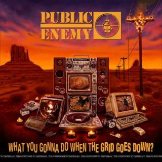 WHAT YOU GONNA DO WHEN THE - PUBLIC ENEMY [CD album]